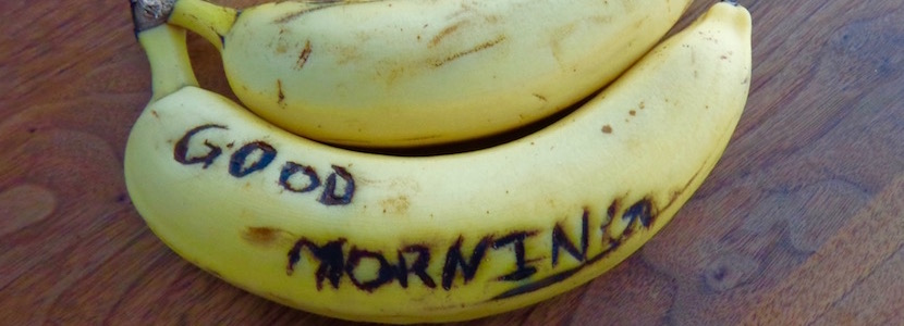 "bananas that say ""good morning"" on them"