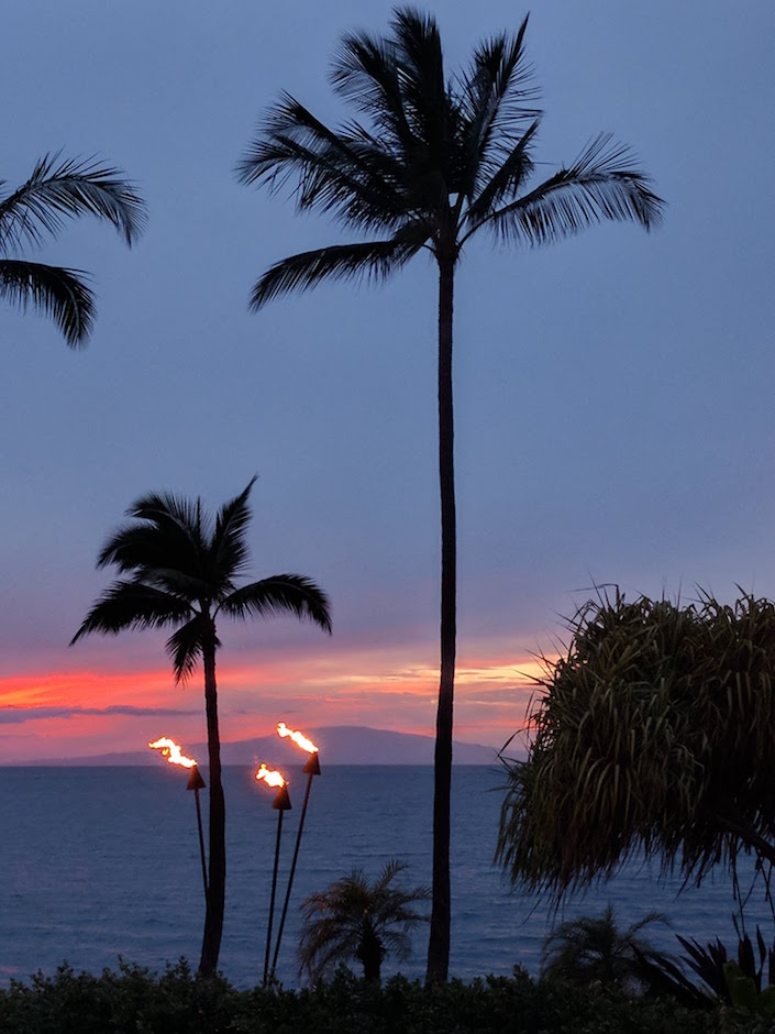 sunset behind pal trees and tiki torches