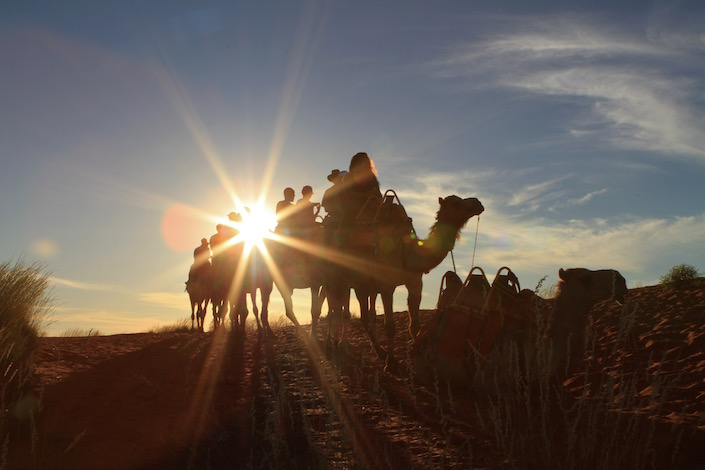 camel riders in sunset