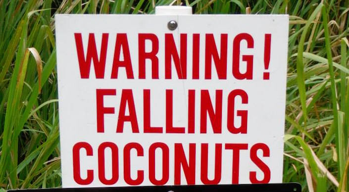 "Sign: ""Warning! Falling coconuts."""