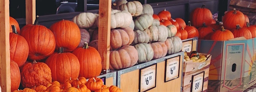 Pumpkins for sale - variety of colors